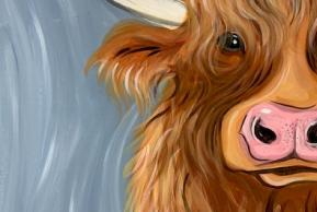 Highland Cow event